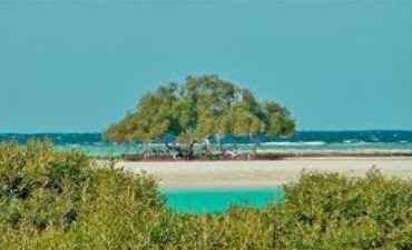 Sharm el Loly and the Mangrove's beach